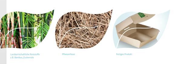 Paperwise - Karton aus Reststoffen
